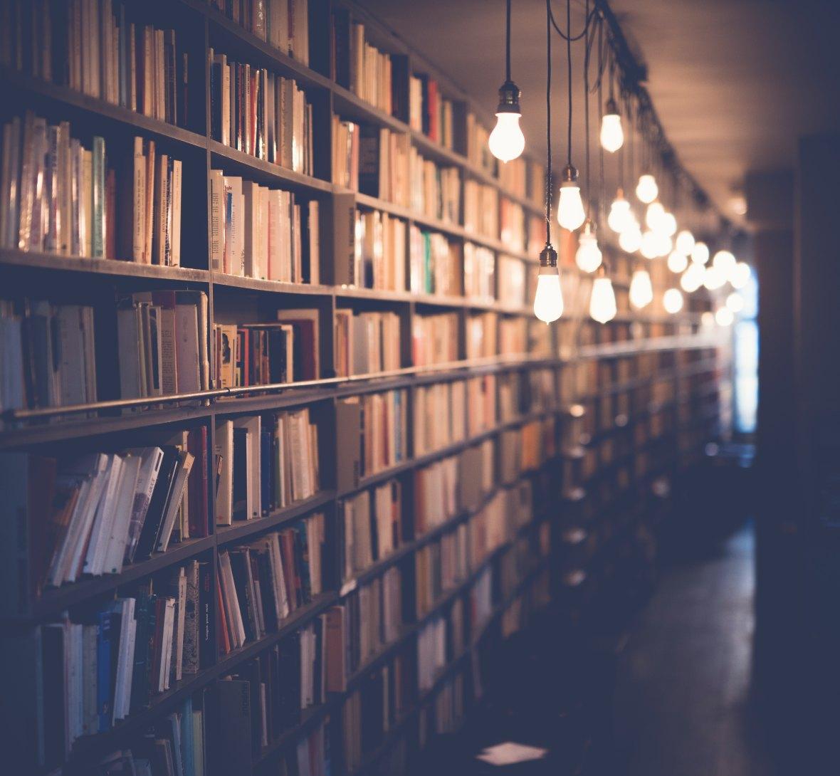 Bookstore by Janko Ferlic on Unsplash: The Modest Reader
